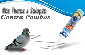 pombos_home